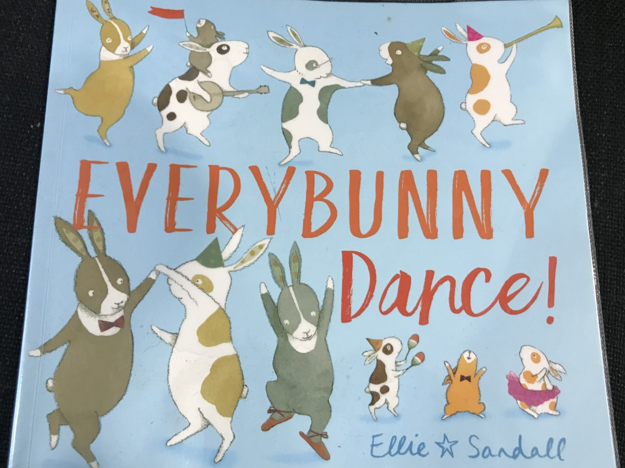 Storytelling, singing and sensory fun aimed at under 4's based on the story Everybunny Dance!